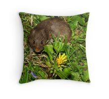 Smelling the Dandelions Throw Pillow