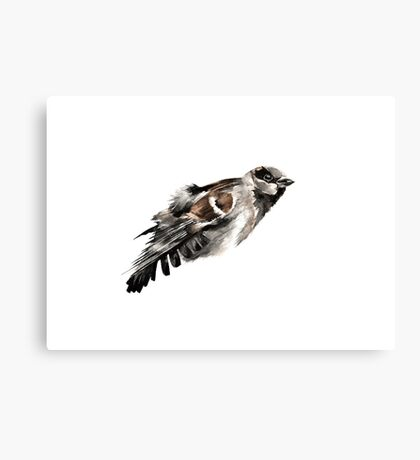 Plumage Canvas Print