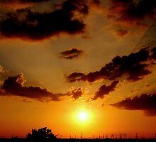 Everglades sunset by CriGa Photography