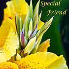 To My Special Friend by heatherfriedman