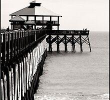 Folly Beach  by Sherri Fink