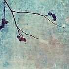 beauty is in every simple branches by Aimelle