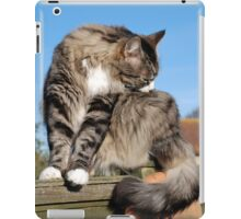 Tabby cat cleaning fur iPad Case/Skin