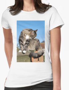 Tabby cat cleaning fur Womens Fitted T-Shirt