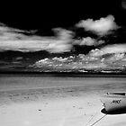 Island Beach, Kangaroo Island in monochrome by Elana Bailey