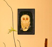 The little Boo-Book Owl by gunnelau