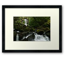 Green Green Hidden Falls Framed Print