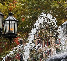 Fire and Water in City Hall Park NY by AnnDixon