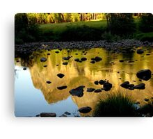 Wildlight Reflections Canvas Print