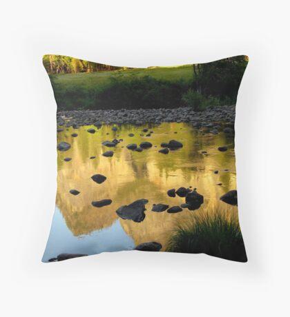 Wildlight Reflections Throw Pillow
