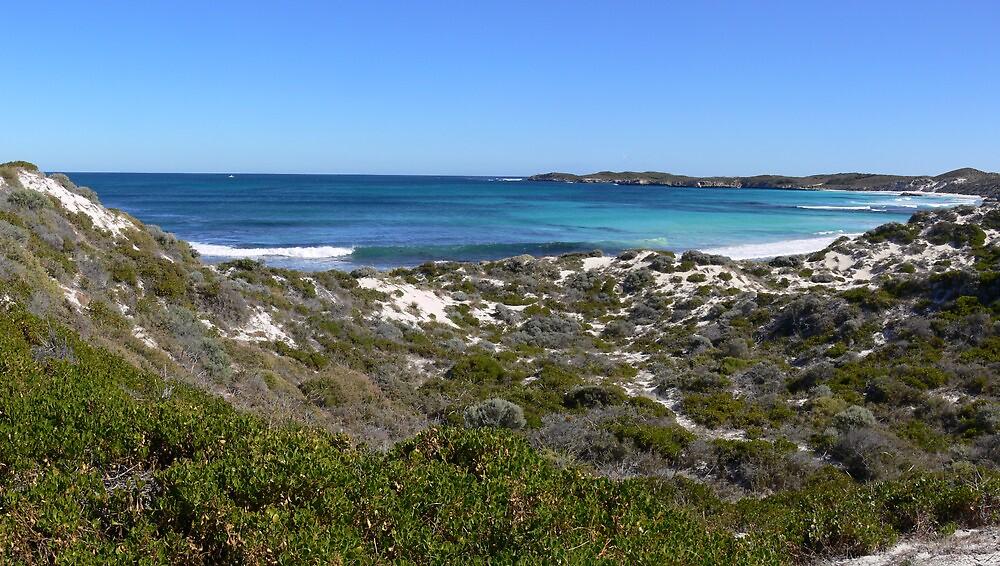 Rottnest Island panorama by PhotosByG