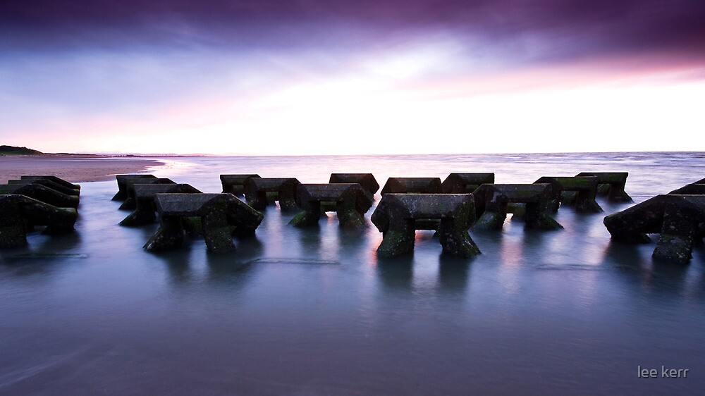 The Barrier by lee kerr