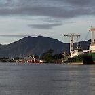 Cairns From trinity Inlet by Scott Schrapel