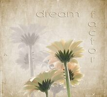 Dream factor by Olga