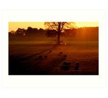 """""""MORNING GLOW"""" Art Print"""