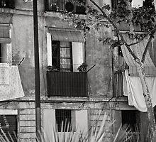 Barcelona Façade  by montserrat
