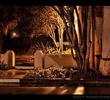 Night Time by Renee D. Miranda
