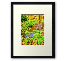 ditch in the park, painting, oil painting, nature Framed Print