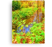 ditch in the park, painting, oil painting, nature Canvas Print