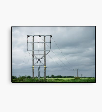 Potential Difference Canvas Print