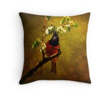 Male Oriole Throw Pillow