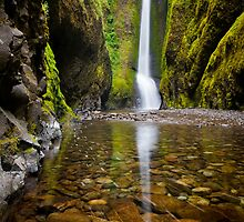Oneonta Falls by Inge Johnsson