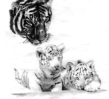 Tiger with Cubs by ClaraBallerini
