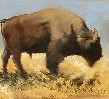 Buffalo Roam by Dave Ivey