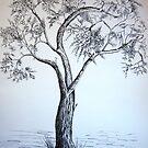 Budding Oak Tree by Mitch Adams