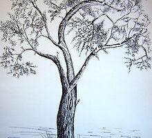 Budding Oak Tree by Debbie  Adams
