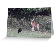 Backyard Buddies Greeting Card