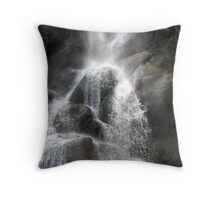 Grizzley Falls I Throw Pillow