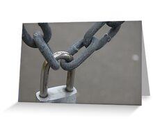 metal locks Greeting Card