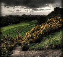 Step down in to Edinburgh by Chris Cherry