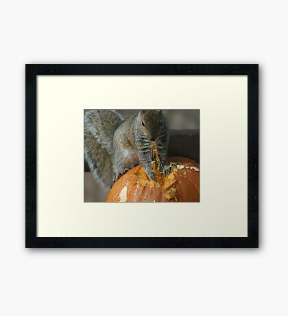 Pumpkin on the Menu Framed Print