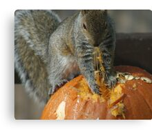 Pumpkin on the Menu Canvas Print