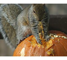 Pumpkin on the Menu Photographic Print