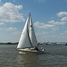 Sailboat on the Potomac by Eileen Brymer