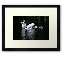 New Life. Framed Print