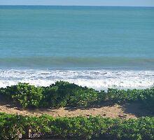 Puerto Rico Beach by Eileen Brymer