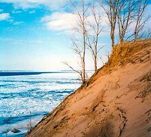 Winter Dune Edge by mrscaer