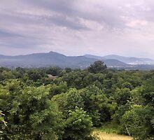 Blue Ridge Mountains - Virginia by LovelySouthern