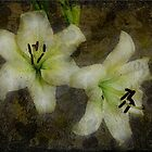 White Lilies Composite Painting by Sarahbob