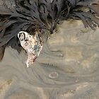 Natures Abstract by Audrey Krüger