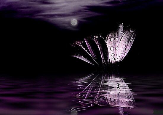 Paper Moon by John Poon
