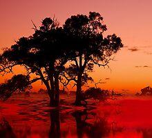 """Sunrise Brilliance"" by Heather Thorning"