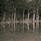 The Frio Reflection BW by Roschetzky