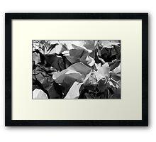 paper Framed Print