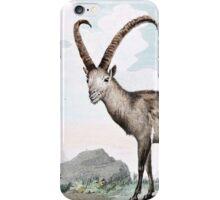 Steinbock (Ibex) Illustration iPhone Case/Skin