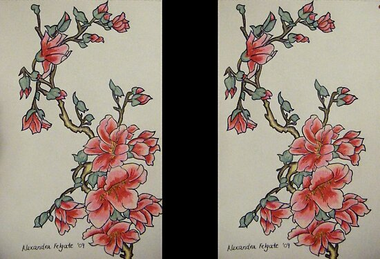 japan cherry blossom drawing. Cherry Blossom by Alexandra